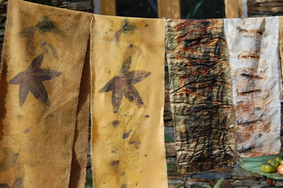 Natural Dyeing 2